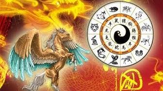 Finde raus was dein chinesisches Sternzeichen ist