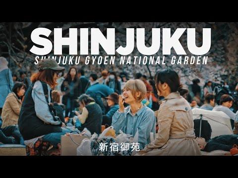SHINJUKU GYOEN 🇯🇵