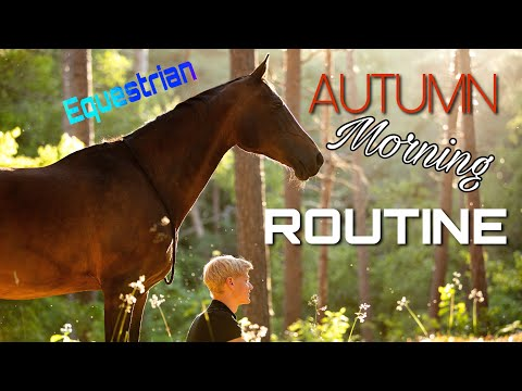 EQUESTRIAN MORNING ROUTINE | autumn