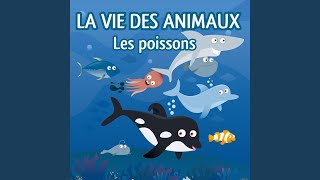 Introduction aux poissons