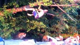 Tree Climbing Workouts - Animal Kingdom Training