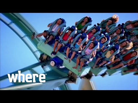 The Top 5 Rides and Attractions at SeaWorld Orlando