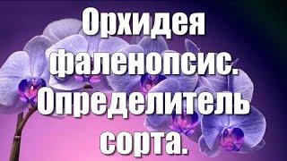 Орхидея фаленопсис. Определитель сорта.(Орхидея Фаленопсис имеет на сегодняшний день такое количество расцветок, что нет ни одного каталога, котор..., 2016-03-20T18:19:07.000Z)