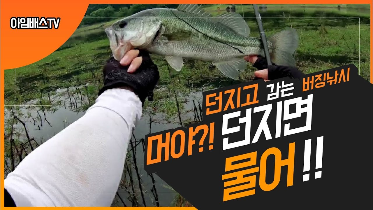 배스낚시 - 버징 왤케 잘나와?! / 느나포인트 [bass fishing] バス釣り