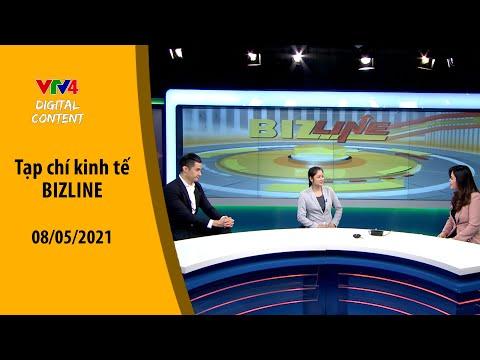 Xu hướng Việt kiều về nước đầu tư  VTV4