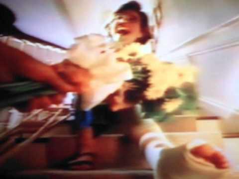 Winn Dixie Theme Song/Commercial