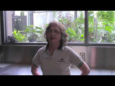 Zoo Volunteer Video 2014