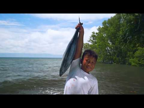 Bloomberg Philanthropies' Vibrant Oceans Initiative - Fisheries Reform in Tañon Strait