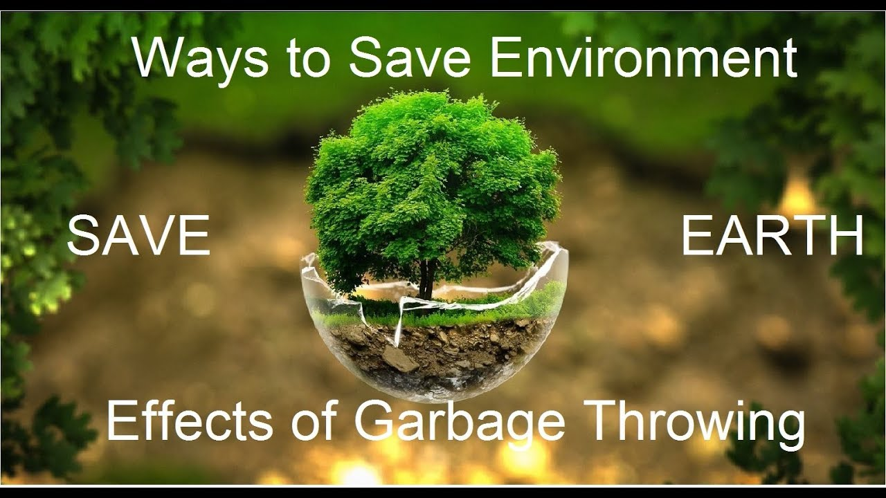 Doctoral dissertation in saving the environment
