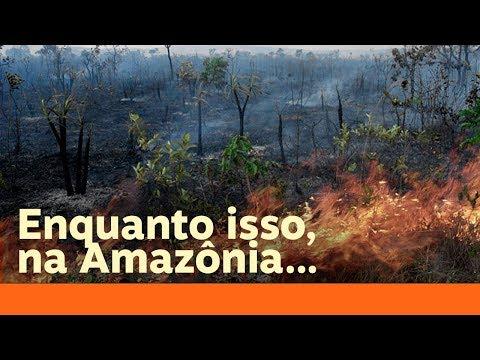 Jair Bolsonaro é louco, ignorante ou irresponsável?
