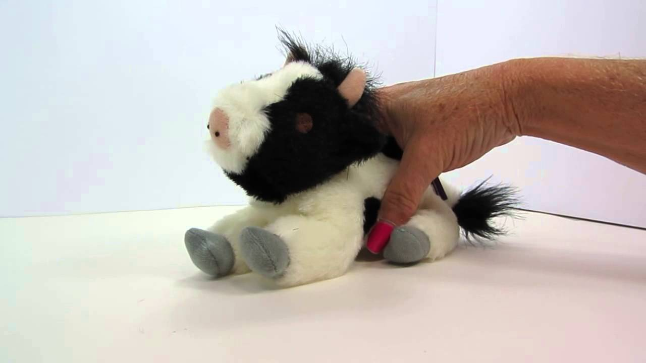 Multipet Look Who S Talking Cow Dog Toy Youtube