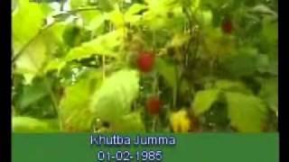 Khutba Jumma:01-02-1985:Delivered by Hadhrat Mirza Tahir Ahmad (R.H) Part 3/5
