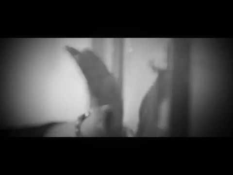 Pinnil Vannu Kannu Potham   Angamaly Diaries   Short Video