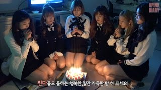Repeat youtube video Apink Diary3 EP.09 (2016 연말 무대)