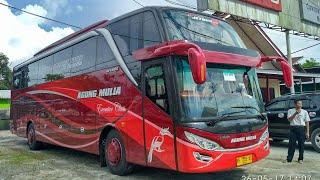 SHD pertama di borneo!!!!! Spesial Mudik 2017 Bus-bus Kalimantan Tengah