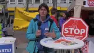 ap - Info-Veranstaltung Zoo Zajac Duisburg - animal-peace