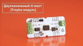 Двухканальный H-мост (Troyka-модуль)