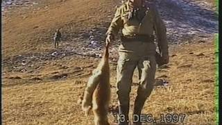 Охота и отлов лис на станцию норными на Северном Кавказе  . В сюжете знаменитый Вангер Вальд