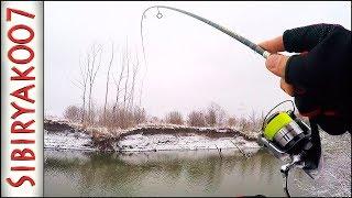 ОГО! Сколько РЫБЫ под этой КОРЯГОЙ! .. Зимний спиннинг. Рыбалка на малой реке