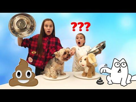 Cмотреть онлайн Обычная Собака против Игрушки Челлендж DOGGIE DOO  Family Game challenge | ПоллиАнна
