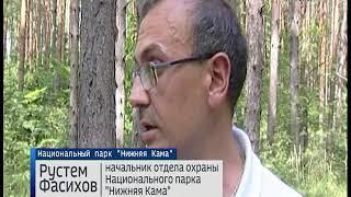 """В национальном парке """"Нижняя Кама"""" нашли кладбище домашних животных"""