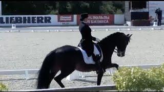 Лидер сборной России по конном спорту готовится к Рио-2016