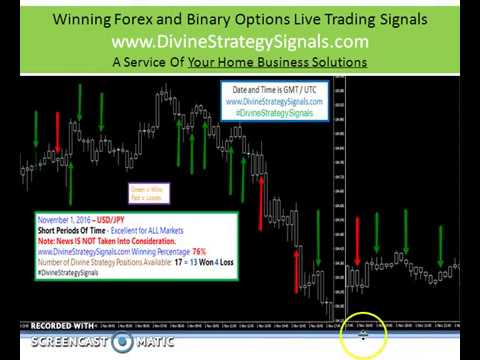 binary options daily 180 wins video