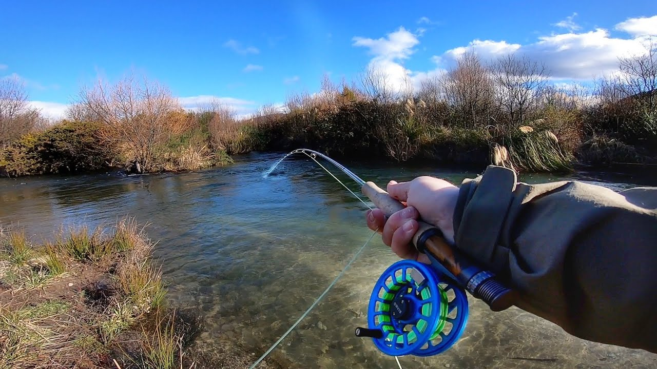 Epic Fly Fishing For NZ Chrome Trout!