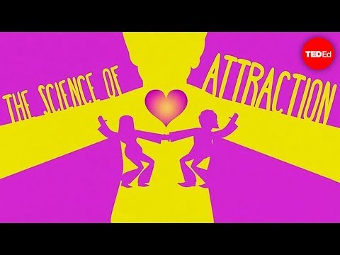 The science of attraction - Dawn Maslar