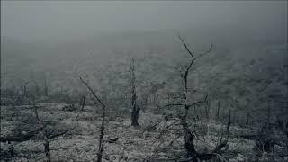 Ashes Of Eden breaking Benjamin one hour