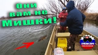 За Рыбой В Астрахань! Снег На Голову! Сазан За Гребень!