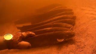 Подводная охота на Днепре в Черкассах 2017