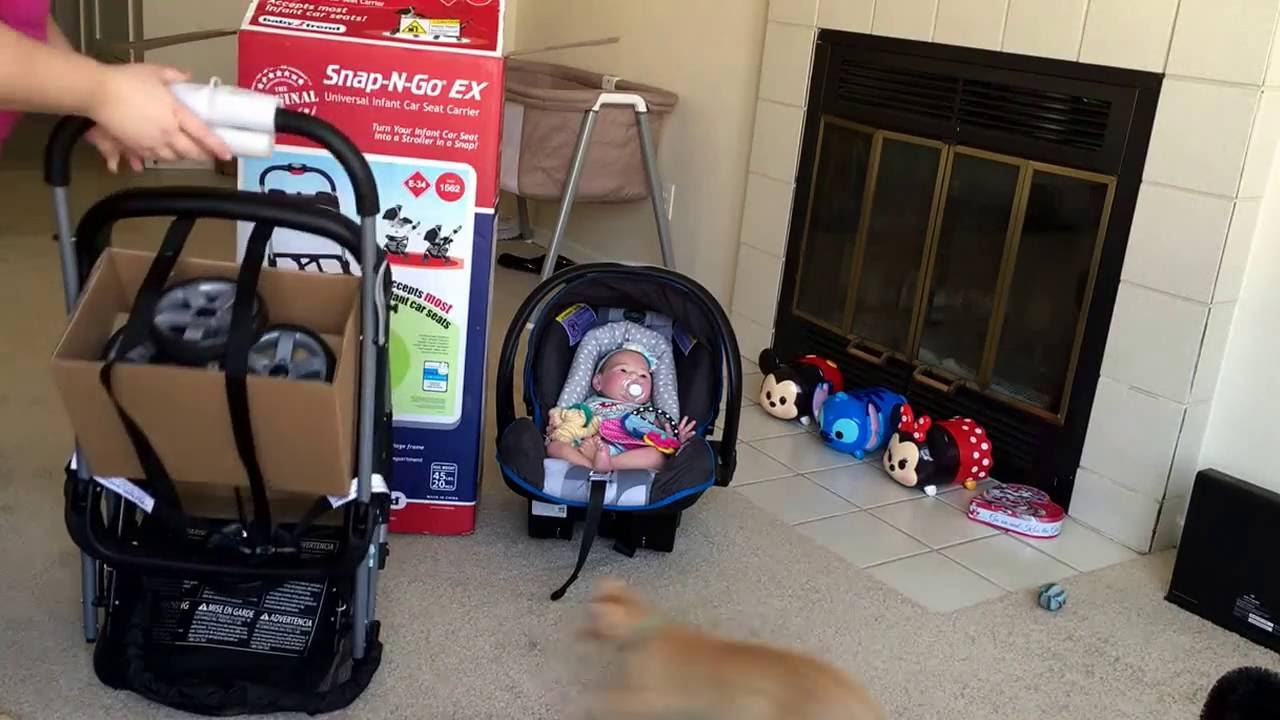 Baby Trend Snap N Go Ex Universal Car Seat Carrier Review With Reborn Paisley