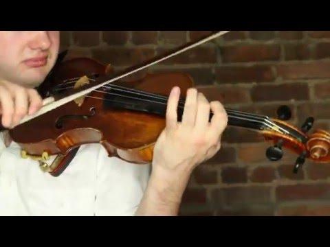 Toxic - Dylan Violin