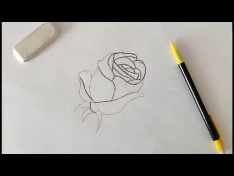Drawing A Basic Flower | Draw With Me 1