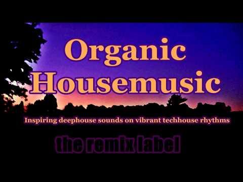 Organic #Housemusic - Cristian Paduraru #deephouse #techhouse album