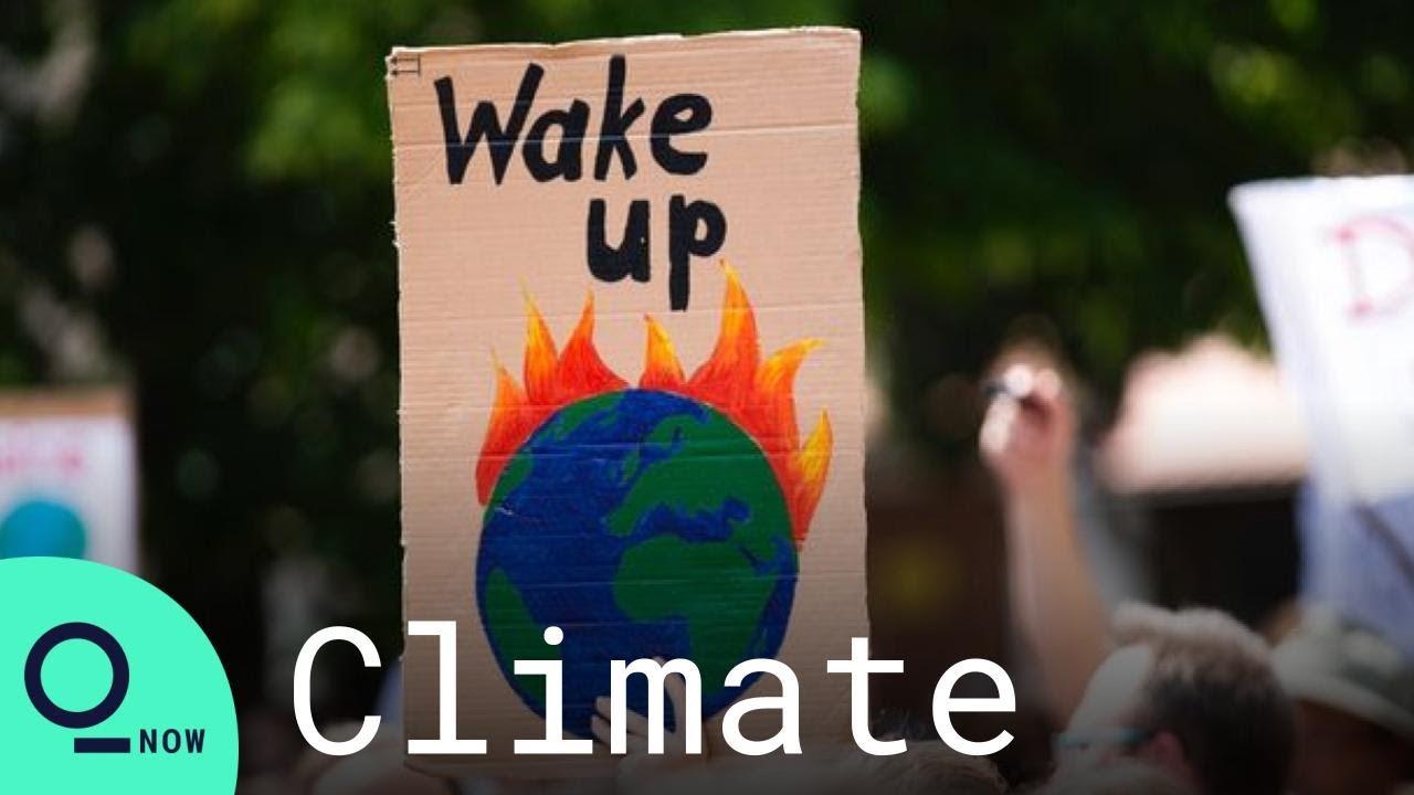 69% of Teens Worldwide Believe Climate Change Is an Emergency