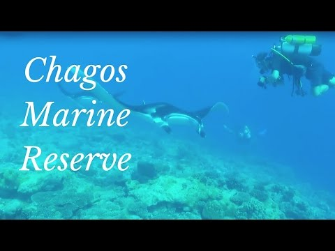 Research in the world's largest marine reserve - Chagos Archipelago