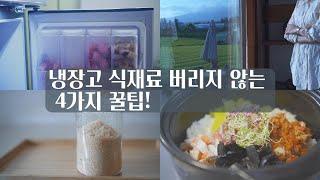 냉장고 속 재료 버리지않는 4가지 꿀팁!! /제로웨이스…