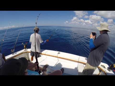 Deep Sea Fishing in the Caribbean Sea