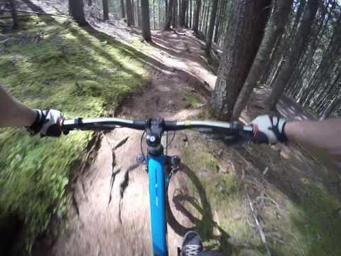 Bikepark Planai/Schladming Jack Lumber Trail/Flowtrail