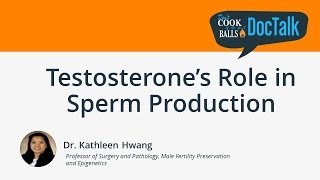 Testosterone s Role in Sperm Production