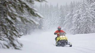 2020 Ski-Doo MXZ