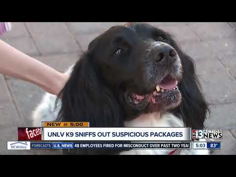 UNLV police K9s on patrol for potential suspicious packages