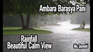 Ambara barasiya paani   mitti di Khushbu ayi   Barish song  Ayushman khurrana   下雨  Raining