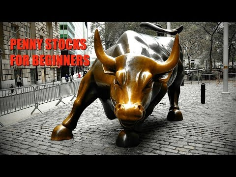 Penny Stocks For Beginners – Learn How To Trade Penny Stocks With Penny Stock Millionaire Tim Sykes!