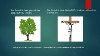 Jesus is the tree of life