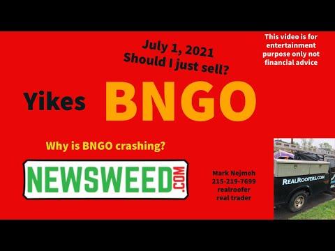 BNGO Bionano Genomics Banana Boat