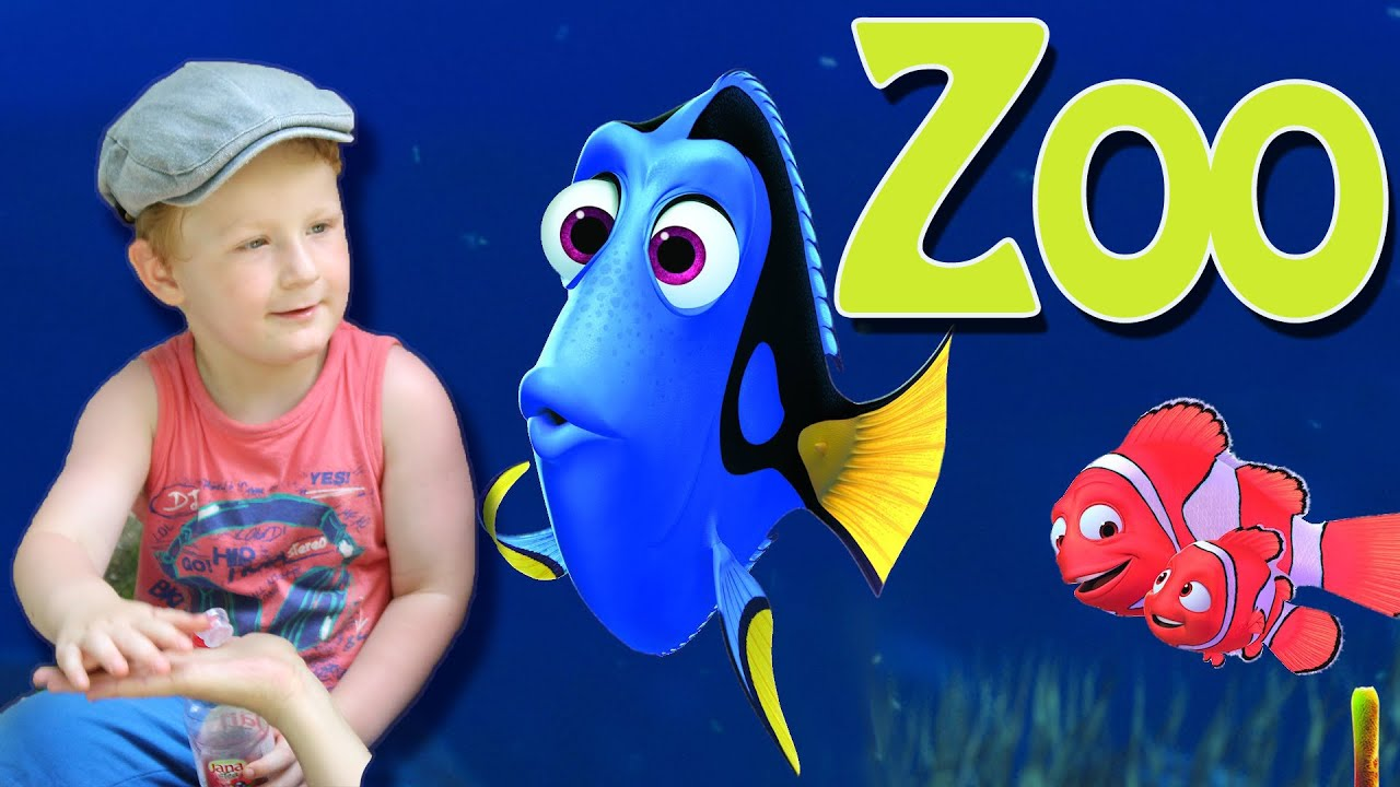 Finding Dory / Finding Nemo at the Zoo! - Casey Vlog