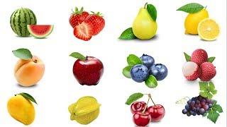 Học tiếng Anh chủ đề các loại trái cây/ Fruits/ English Online